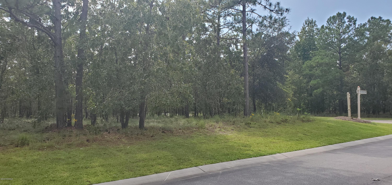 3025 Spero Street, Bolivia, North Carolina 28422, ,Residential land,For sale,Spero,100235443