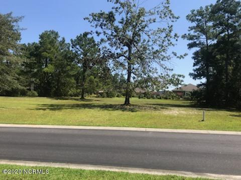 1172 Natal Drive, Bolivia, North Carolina 28422, ,Residential land,For sale,Natal,100134203