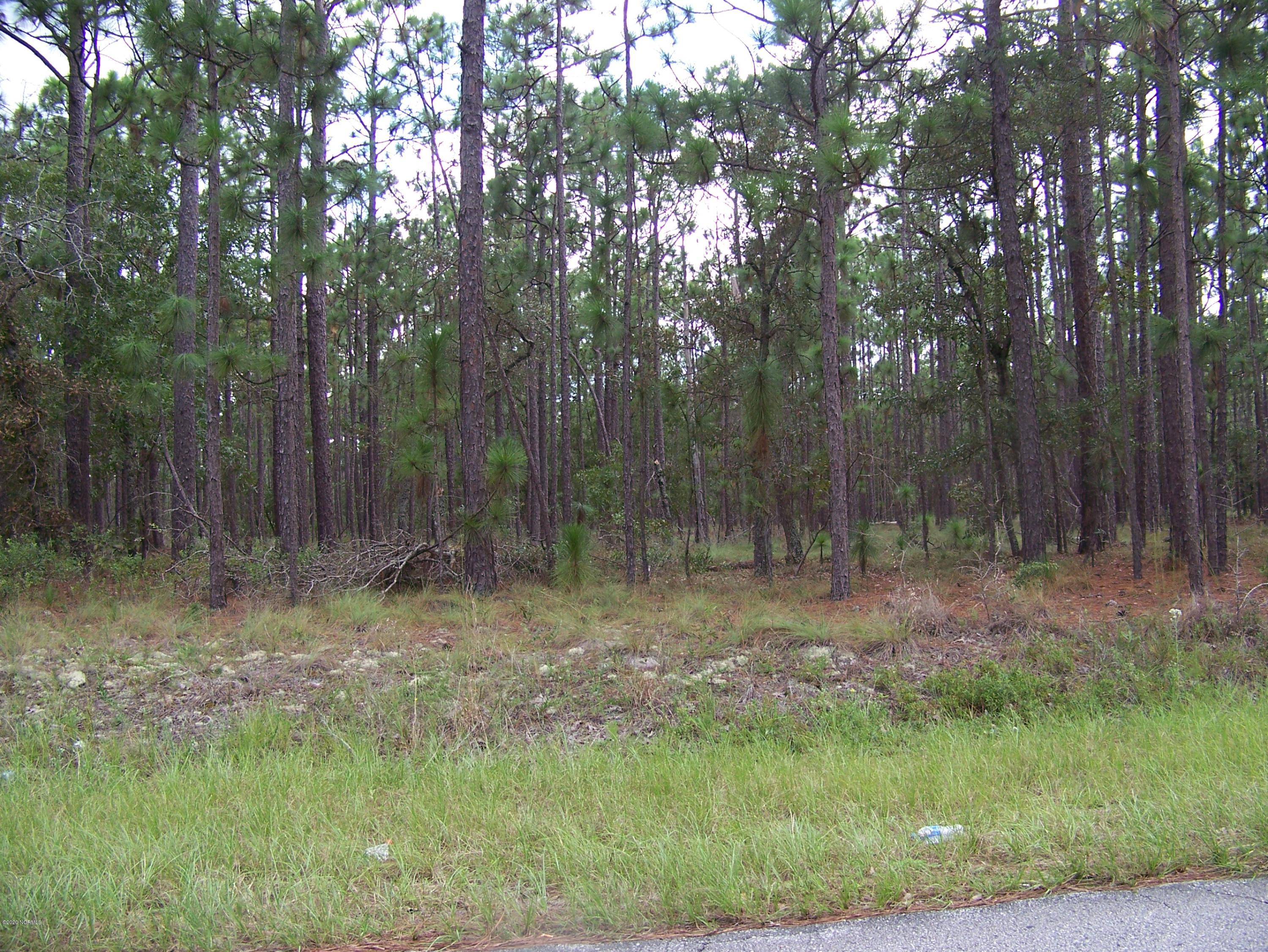 710 Virginia Drive, Boiling Spring Lakes, North Carolina 28461, ,Residential land,For sale,Virginia,100235806
