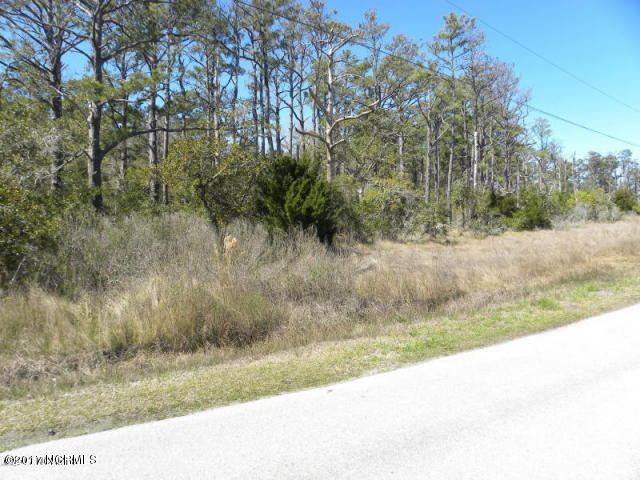 141 Through The Woods Road, Marshallberg, North Carolina 28553, ,Wooded,For sale,Through The Woods,100237195