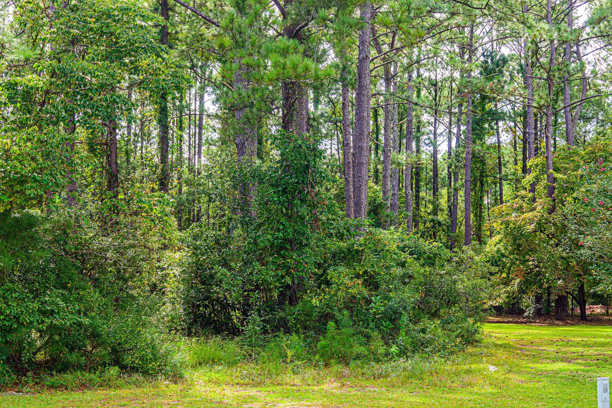 6118 Cardinal Drive, New Bern, North Carolina 28560, ,Residential land,For sale,Cardinal,100237209