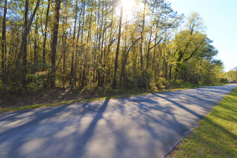 Lot 43 Lakeshore Drive, Minnesott Beach, North Carolina 28510, ,Residential land,For sale,Lakeshore,100238252