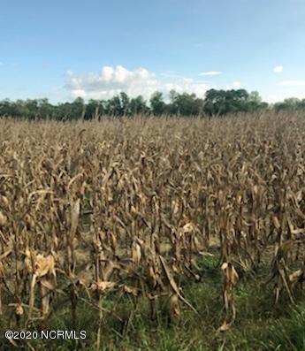 1182 Cedar Fork Road, Beulaville, North Carolina 28518, ,Farm,For sale,Cedar Fork,100238253