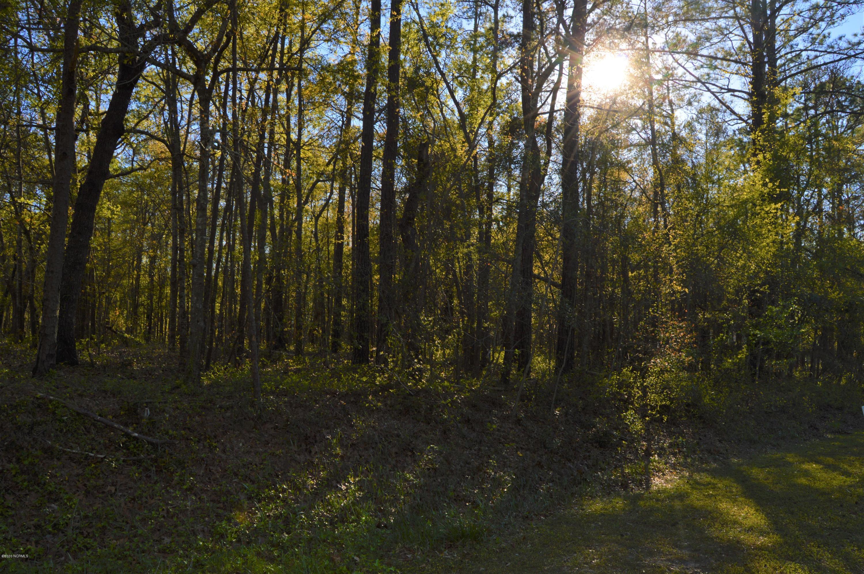 Lot 45 Lakeshore Drive, Minnesott Beach, North Carolina 28510, ,Residential land,For sale,Lakeshore,100238256
