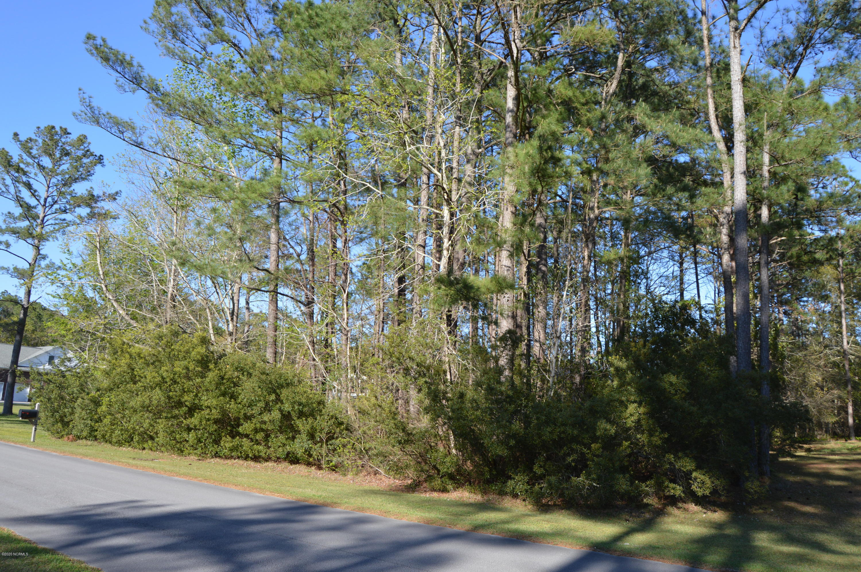 Lot 28 Phillips Drive, Minnesott Beach, North Carolina 28510, ,Residential land,For sale,Phillips,100238264