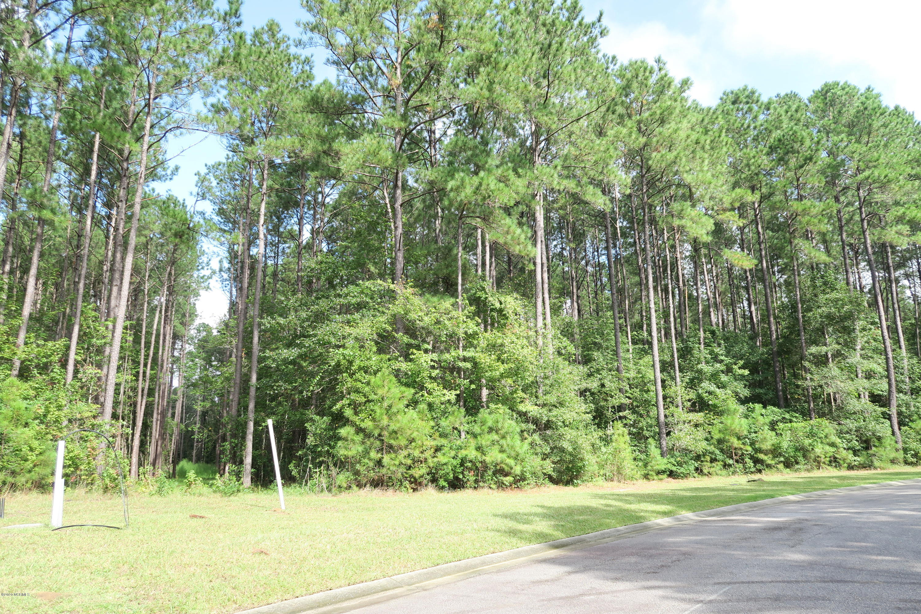 9013 Chesterfield Drive, Calabash, North Carolina 28467, ,Residential land,For sale,Chesterfield,100238524