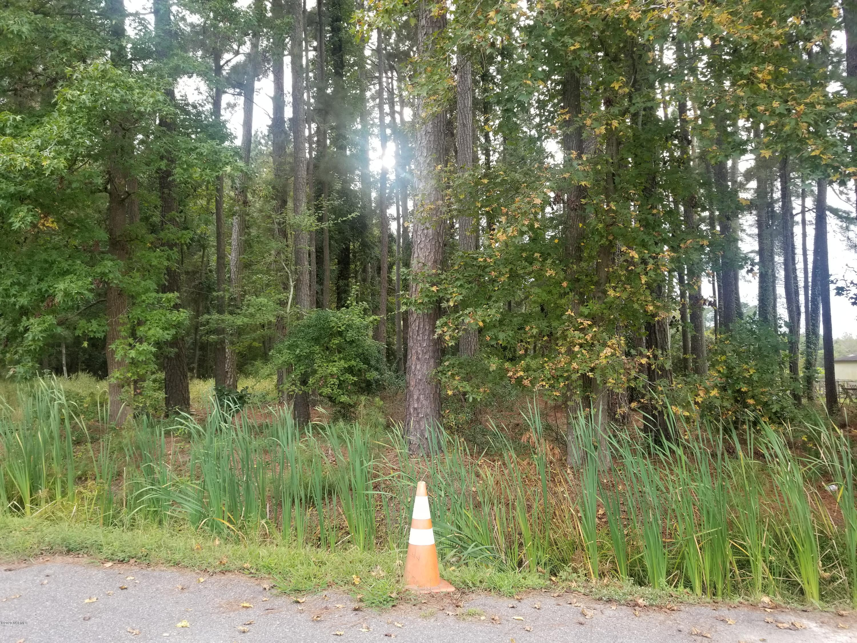 Lot 10 Kinlaw Drive, Chadbourn, North Carolina 28431, ,Residential land,For sale,Kinlaw,100238706