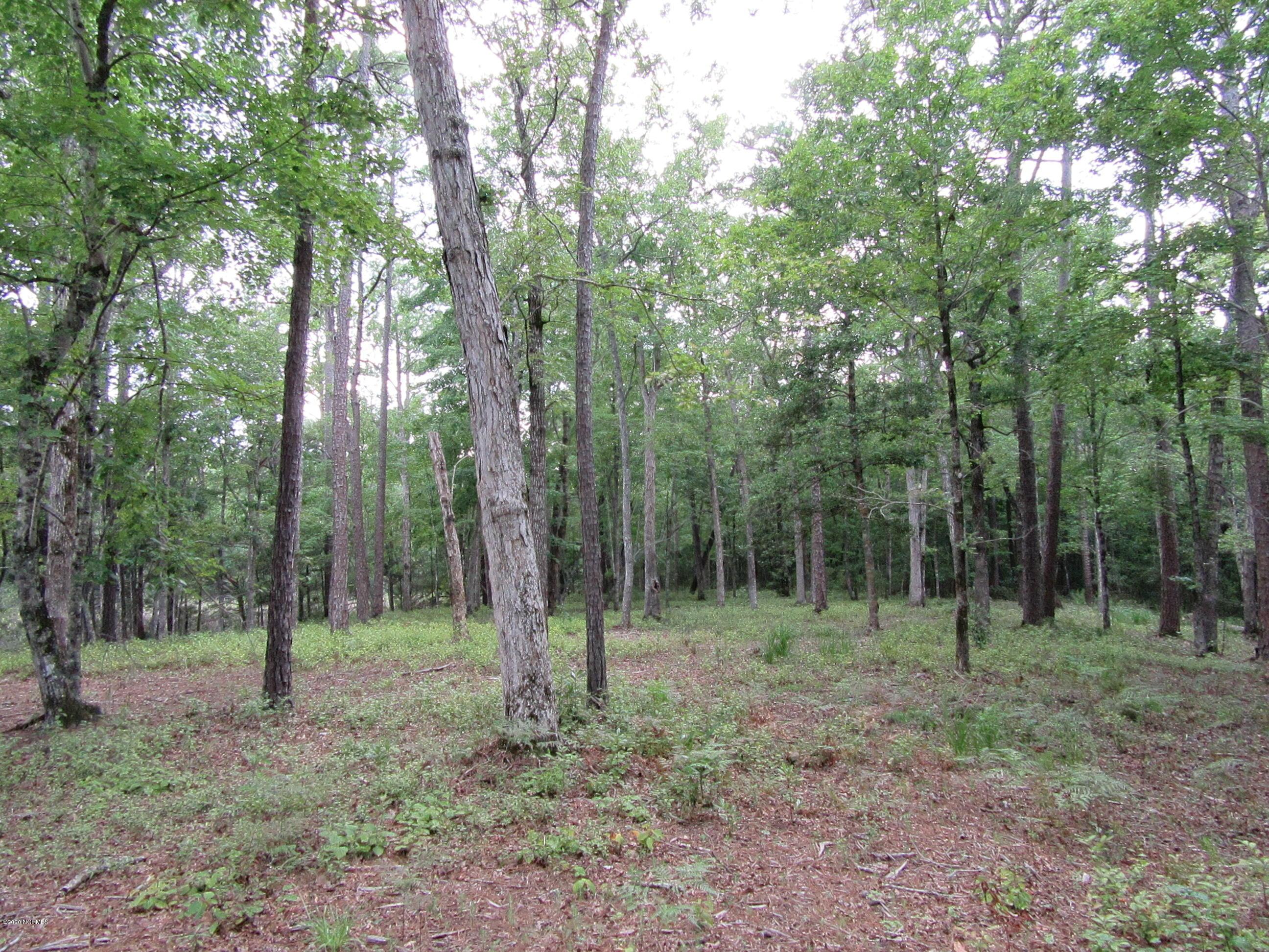 671 Plantation Parkway, Oriental, North Carolina 28571, ,Residential land,For sale,Plantation,100238873
