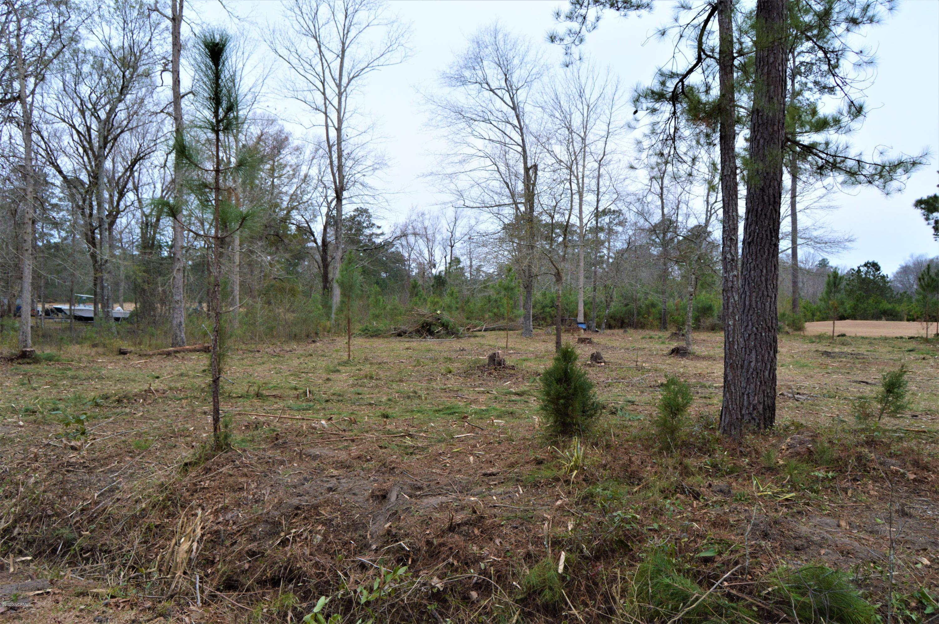 1.35 Wilmington Street Ext, Burgaw, North Carolina 28425, ,Residential land,For sale,Wilmington Street,100239009