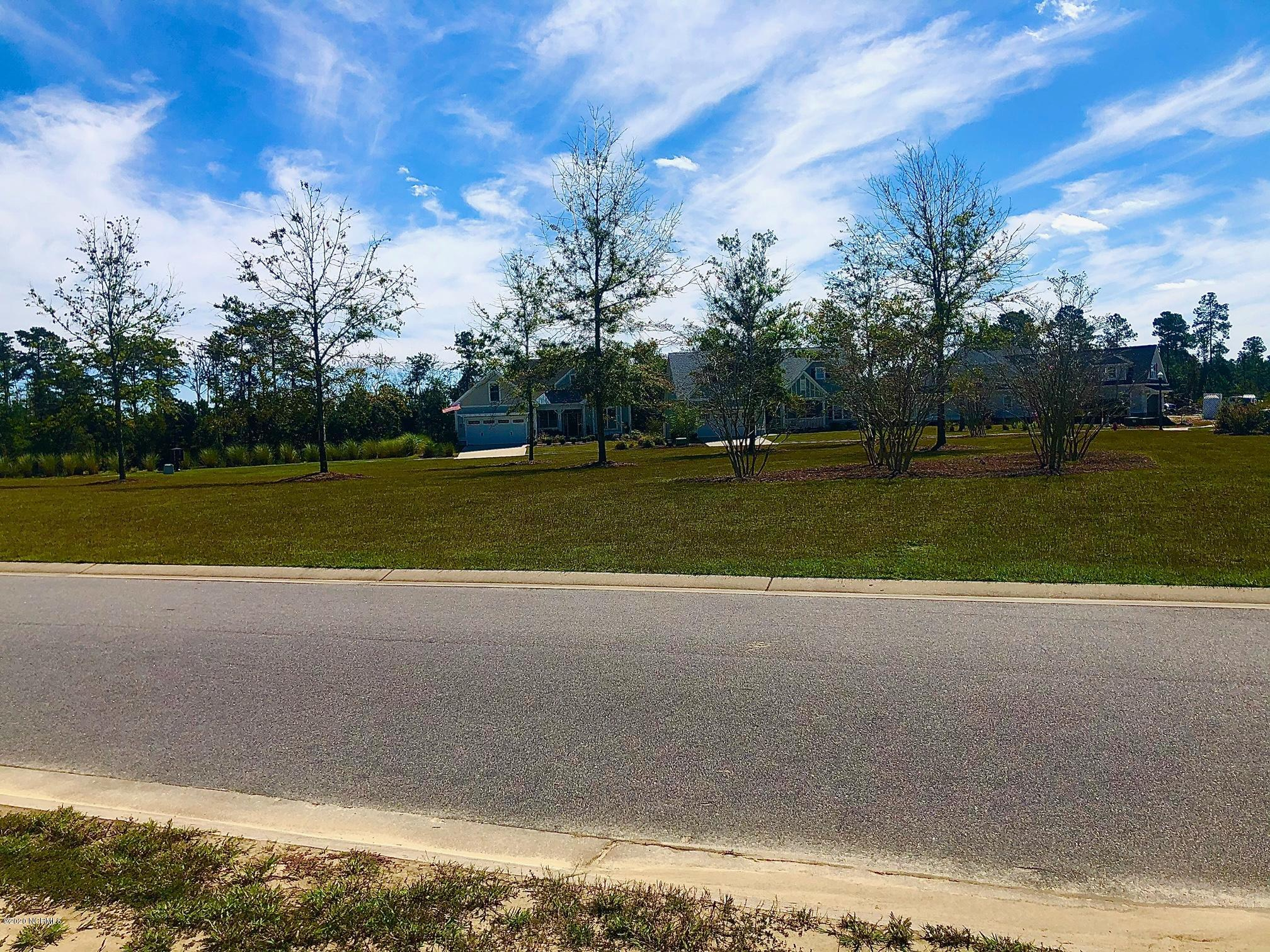 1326 Star Grass Way, Leland, North Carolina 28451, ,Residential land,For sale,Star Grass,100239171