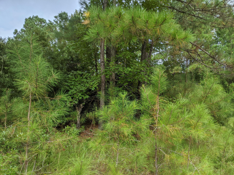 1601 Poplar Branch Trail, Bolivia, North Carolina 28422, ,Mixed use,For sale,Poplar Branch Trail,100210804