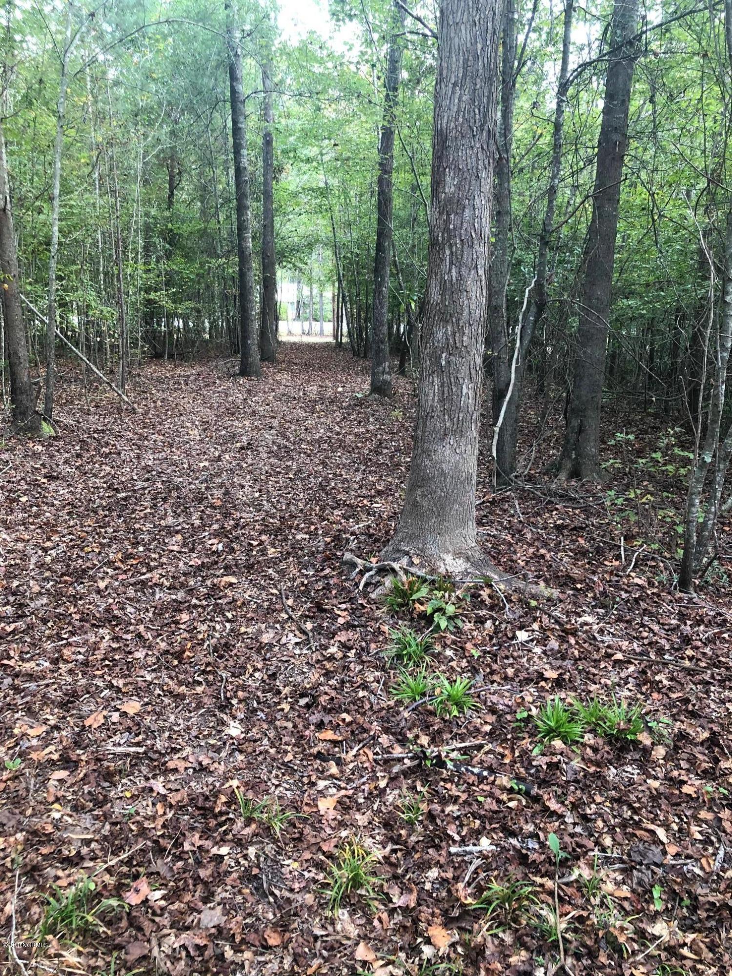 2315 Spring Garden Road, New Bern, North Carolina 28562, ,Residential land,For sale,Spring Garden,100239282