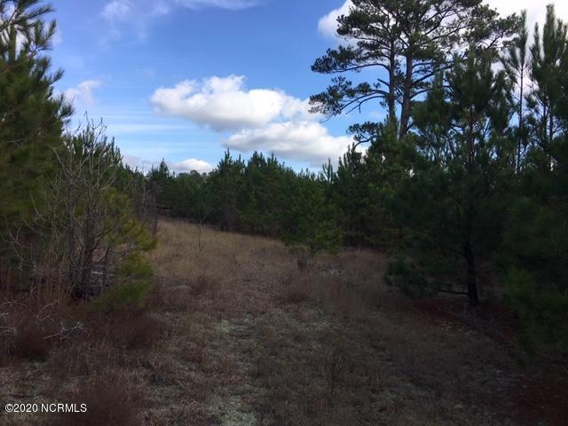 0 Hwy 53, White Oak, North Carolina 28399, ,Wooded,For sale,Hwy 53,100218385