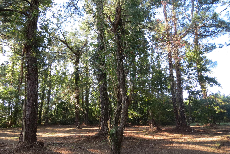 1930 White Farm Road, Oriental, North Carolina 28571, ,Residential land,For sale,White Farm,100232336