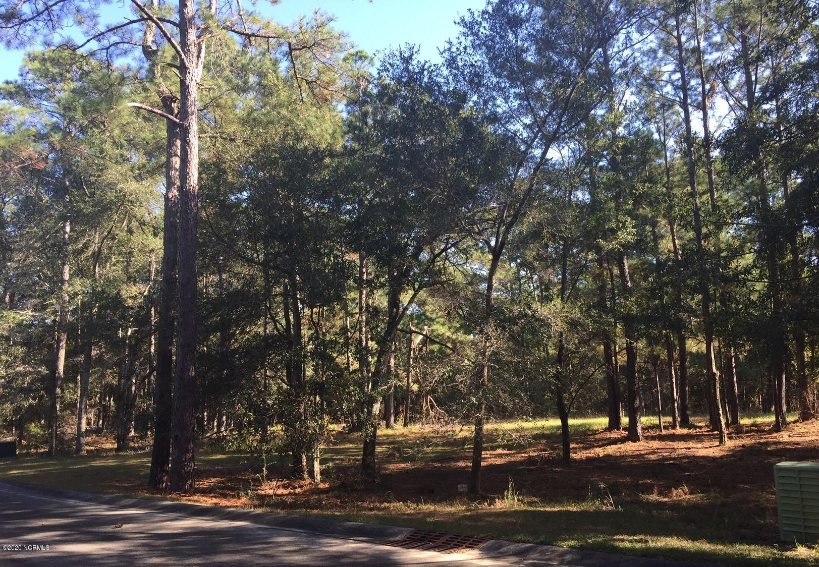 509 Nantes Ct Court, Supply, North Carolina 28462, ,Residential land,For sale,Nantes Ct,100243619