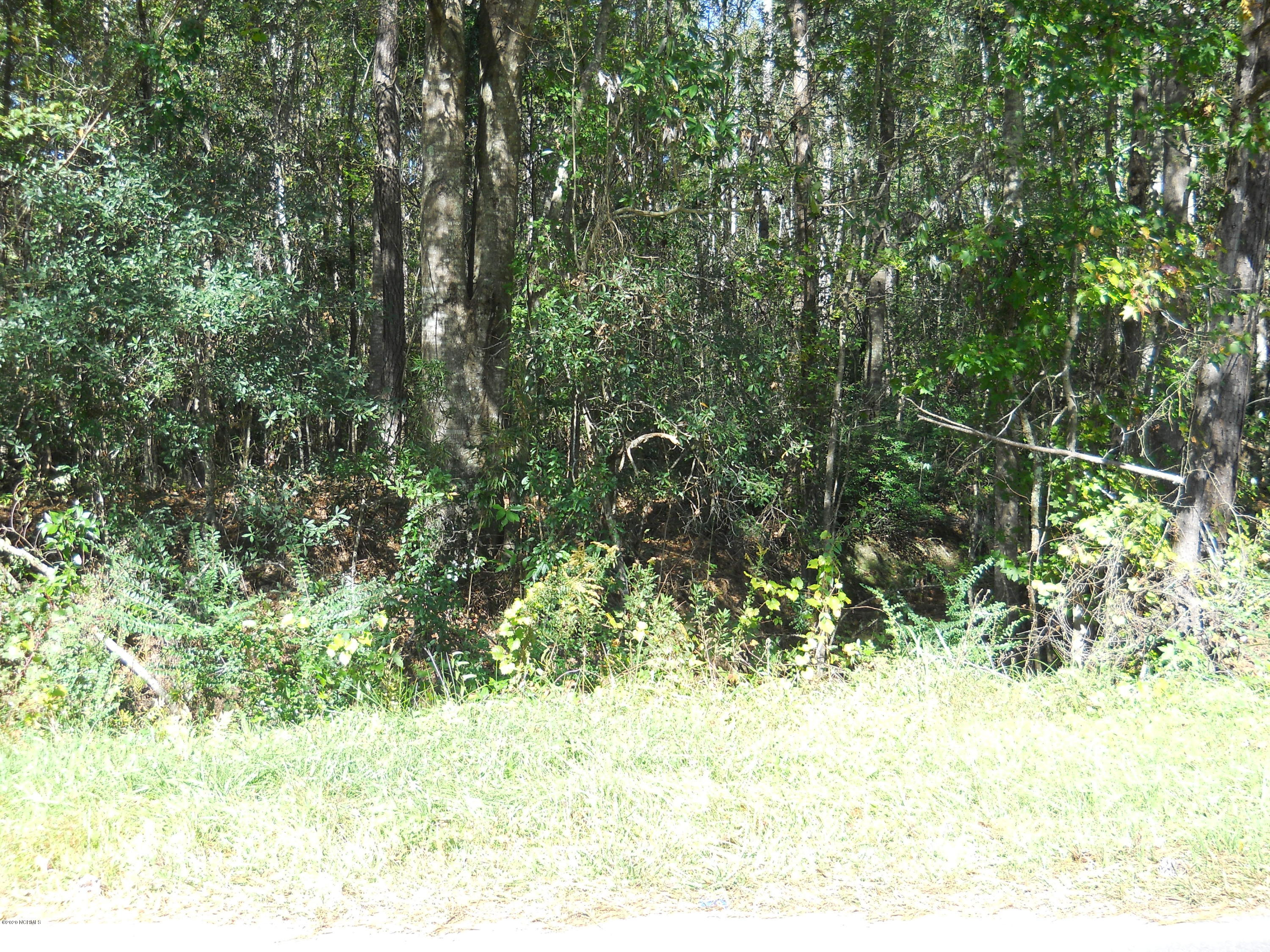 350 Marlowtown Road, Calabash, North Carolina 28467, ,Residential land,For sale,Marlowtown,100244754