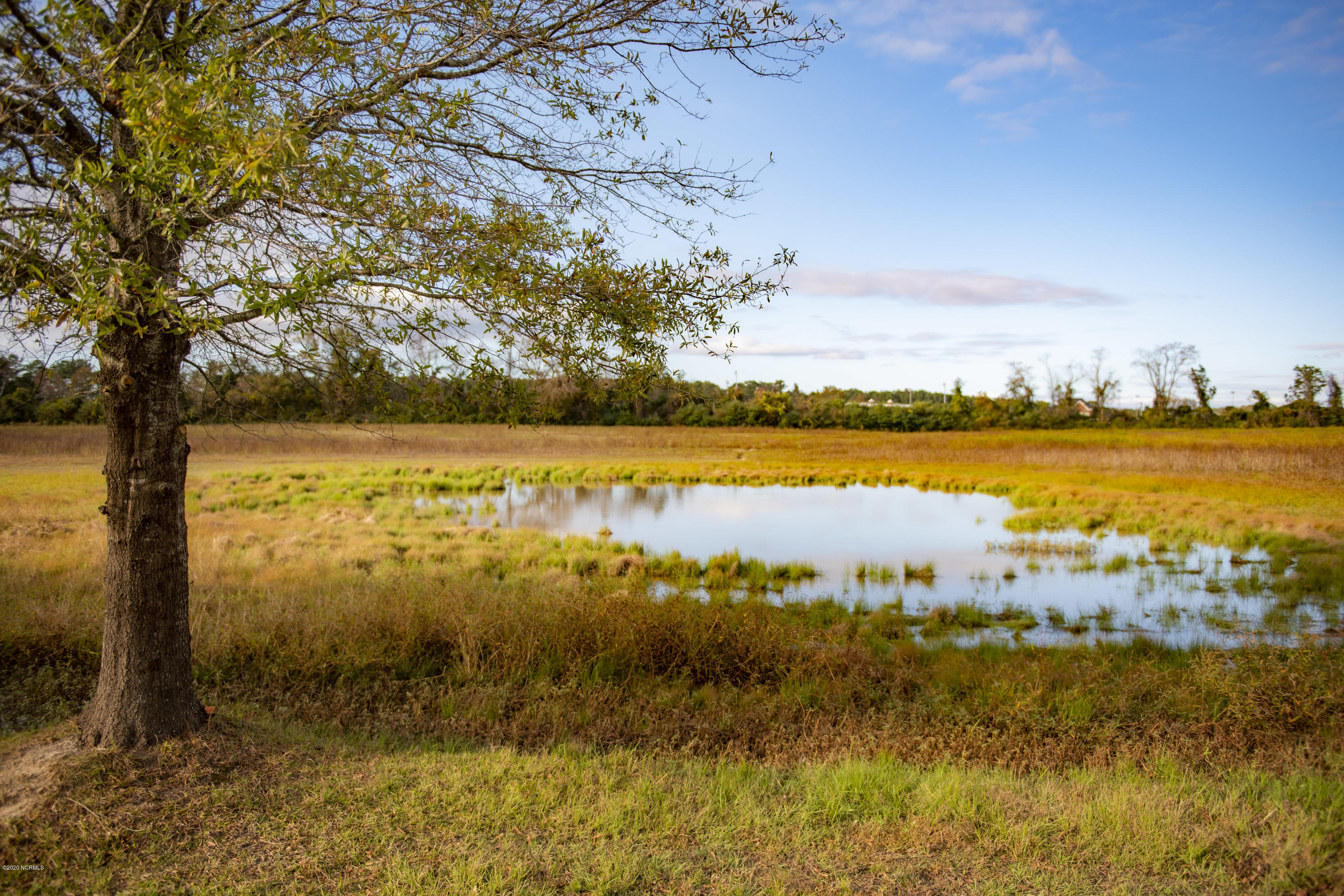 0 Old Airport Road, New Bern, North Carolina 28562, ,Agriculture,For sale,Old Airport,100191652