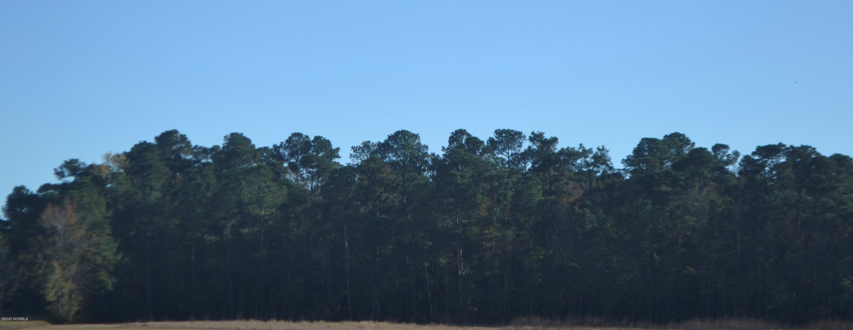 608 C Pea Landing Road, Ash, North Carolina 28420, ,Wooded,For sale,Pea Landing,100169773