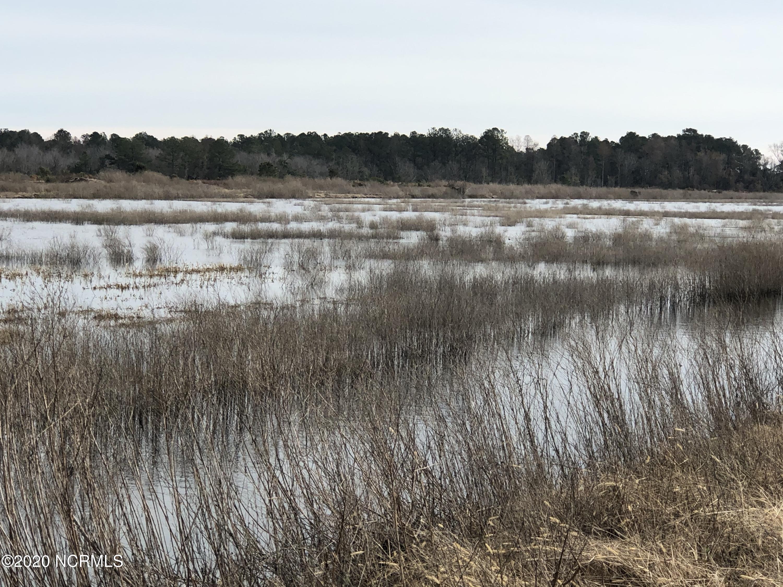 0 New Lake Road, Belhaven, North Carolina 27810, ,Farm,For sale,New Lake,100227311