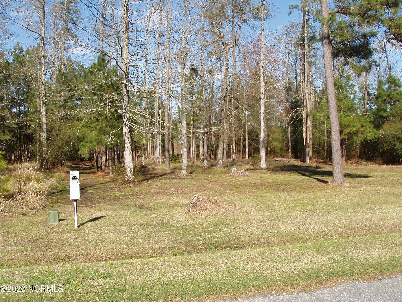 18 Batemans Creek Road, Belhaven, North Carolina 27810, ,Residential land,For sale,Batemans Creek,100249261