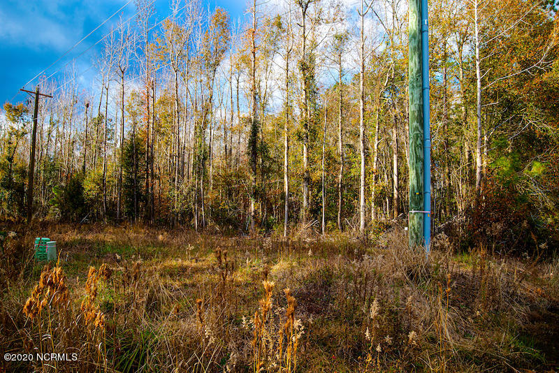 00 Magnolia Way, Grantsboro, North Carolina 28529, ,Residential land,For sale,Magnolia,100249841