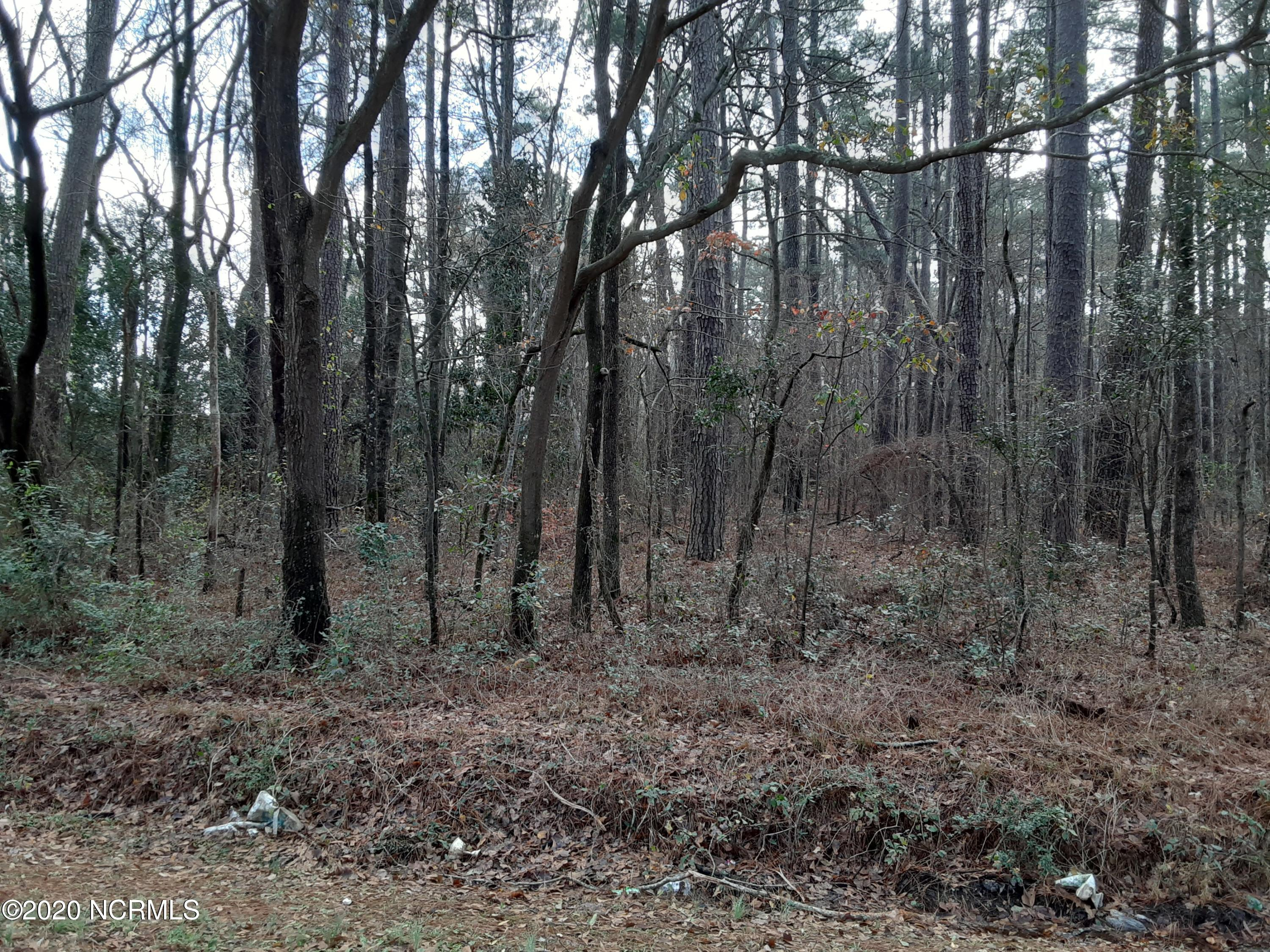 0 Old Wire Road, Shannon, North Carolina 28386, ,Undeveloped,For sale,Old Wire,100250191