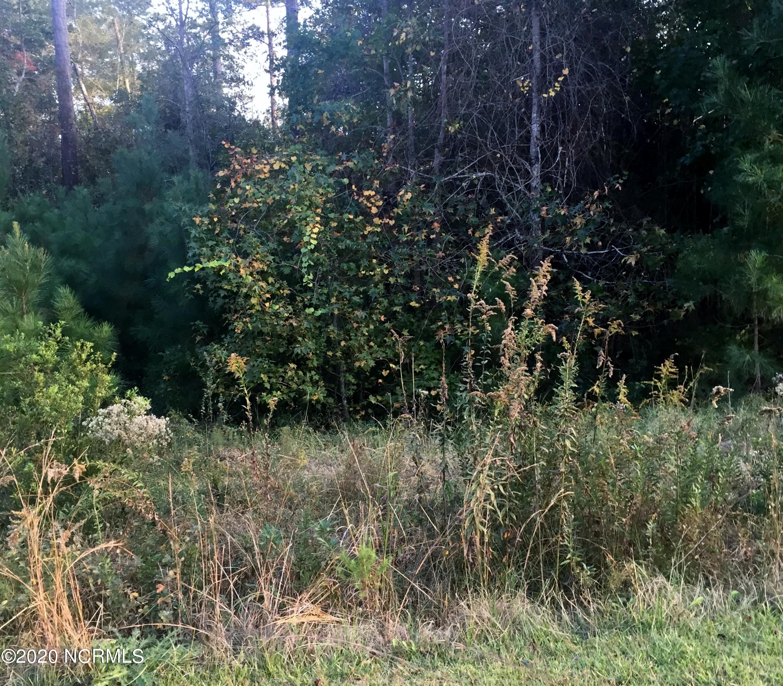268 White Oak Bluff Road, Stella, North Carolina 28582, ,Residential land,For sale,White Oak Bluff,100036385