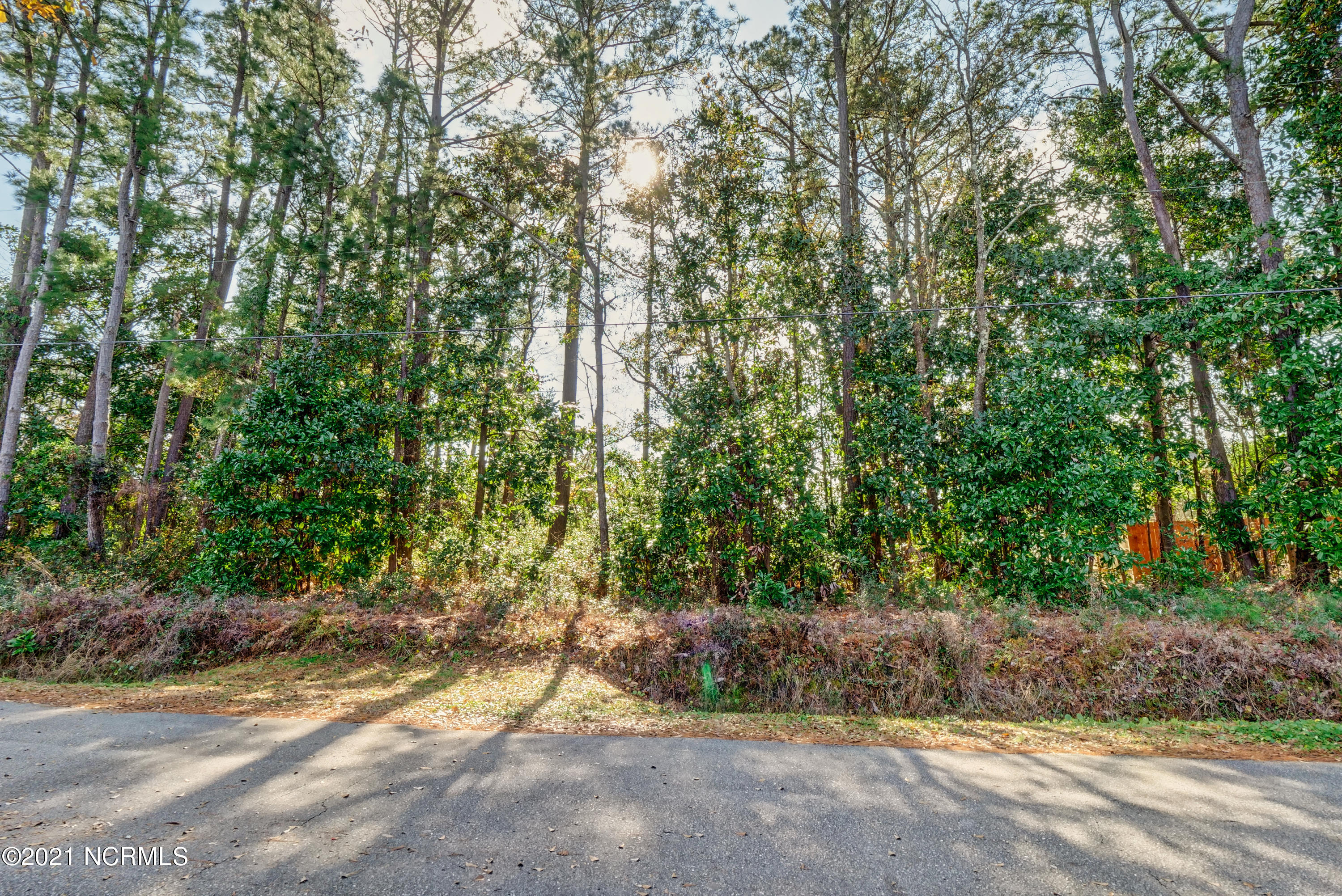 306 Holiday Hills Drive, Wilmington, North Carolina 28409, ,Residential land,For sale,Holiday Hills,100251477