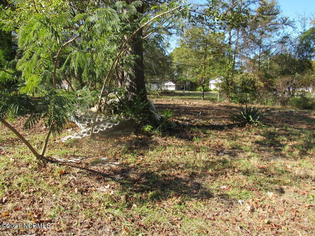 103 Greenwood Boulevard, Princeville, North Carolina 27886, ,Residential land,For sale,Greenwood,100251958
