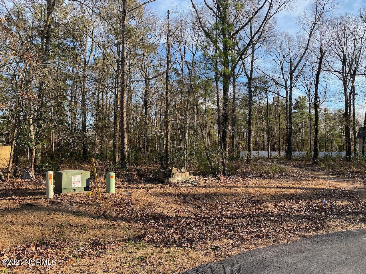 221 Sanderling Lane, New Bern, North Carolina 28562, ,Residential land,For sale,Sanderling,100252916