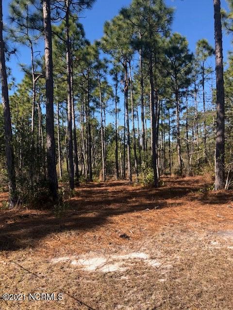 6850 Beckman Circle, Ocean Isle Beach, North Carolina 28469, ,Residential land,For sale,Beckman,100253136