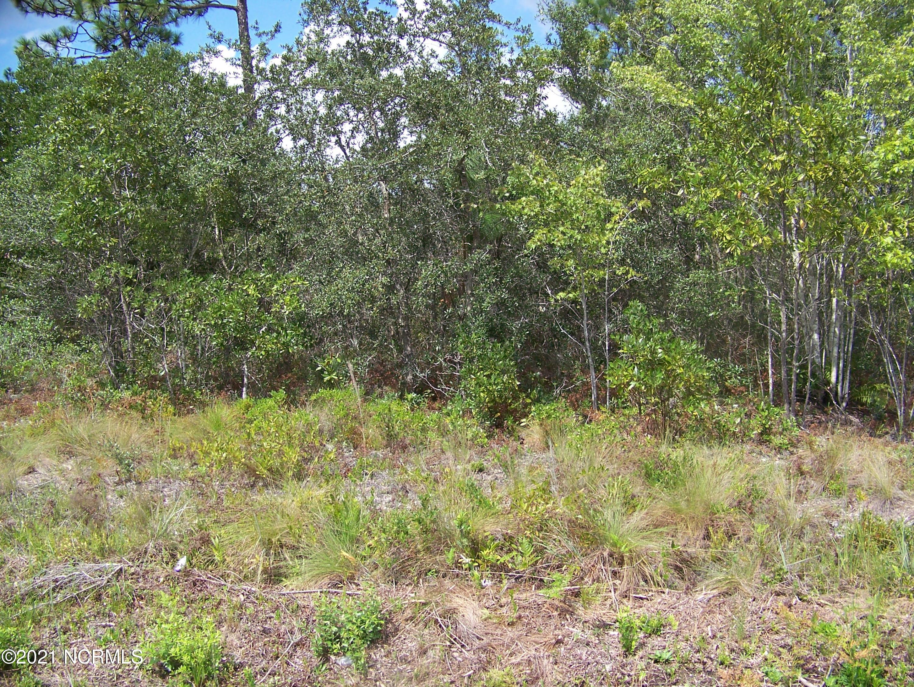 530 Cresent Road, Boiling Spring Lakes, North Carolina 28461, ,Residential land,For sale,Cresent,100254307