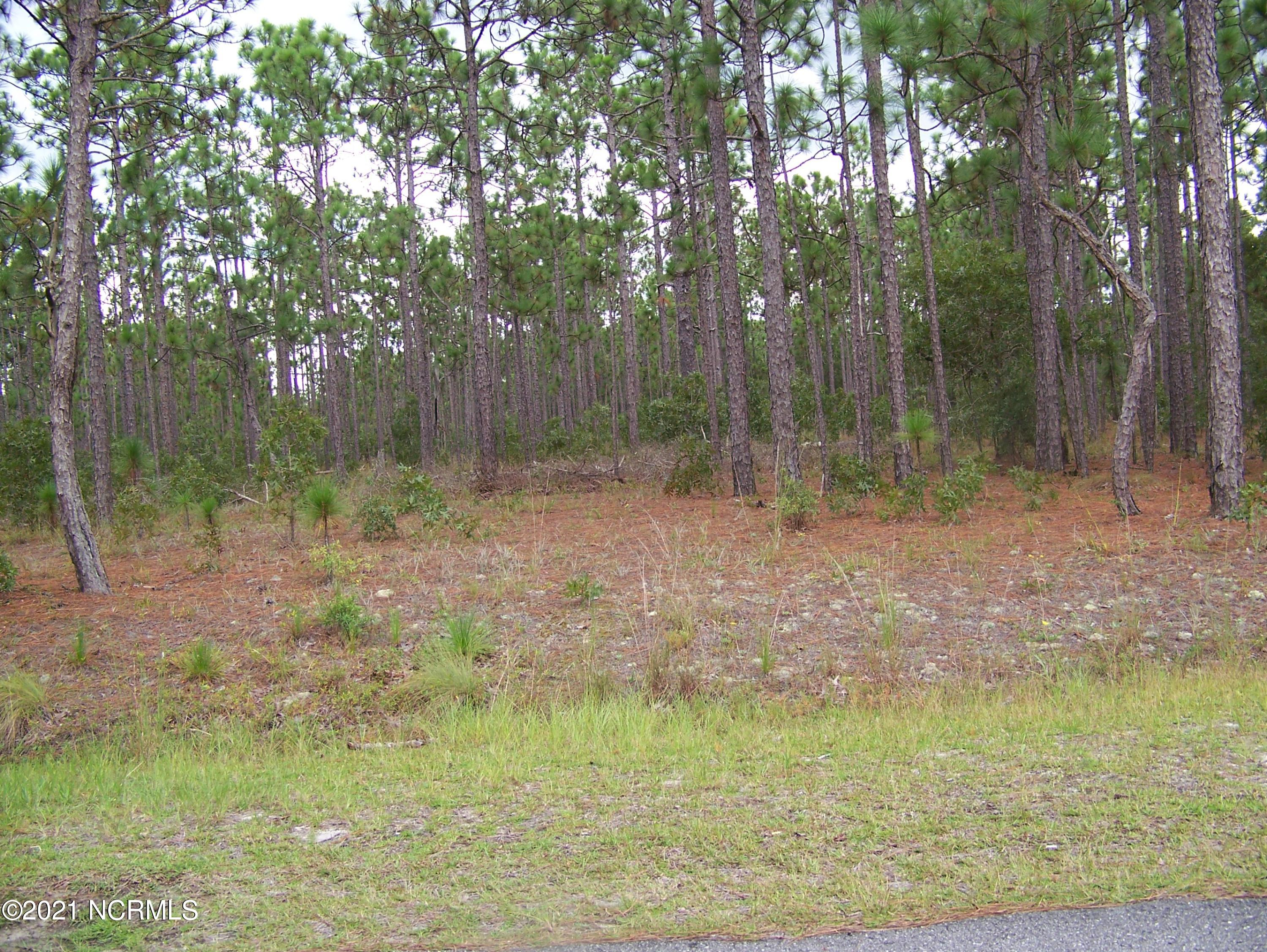 520 Cresent Road, Boiling Spring Lakes, North Carolina 28461, ,Residential land,For sale,Cresent,100254311