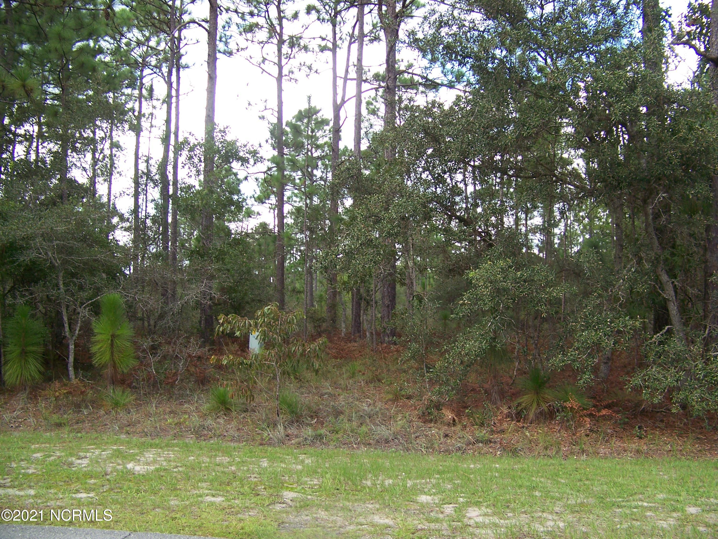 457 Greenmoss Road, Boiling Spring Lakes, North Carolina 28461, ,Residential land,For sale,Greenmoss,100254334