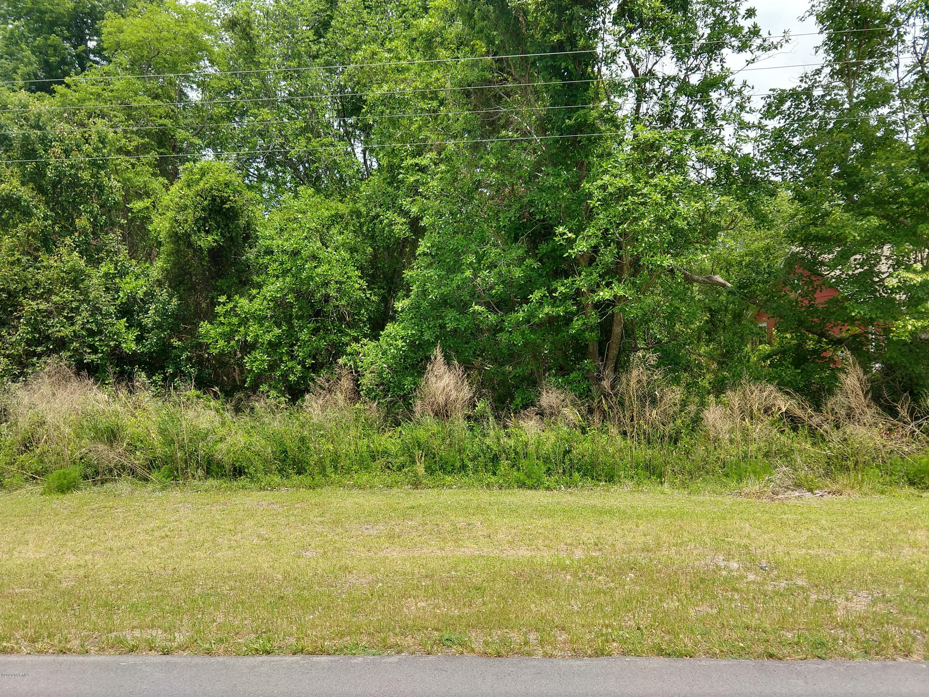 1732 Caracara Drive, New Bern, North Carolina 28560, ,Residential land,For sale,Caracara,100256068