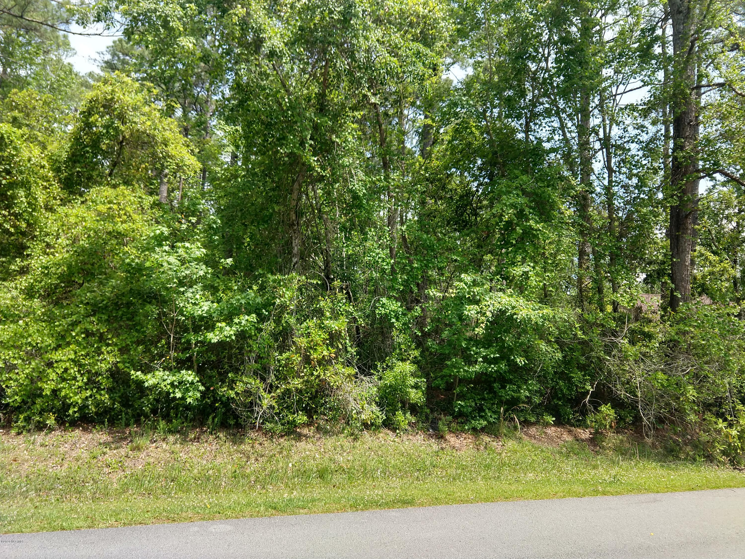 805 Wind Way, New Bern, North Carolina 28560, ,Residential land,For sale,Wind,100256071