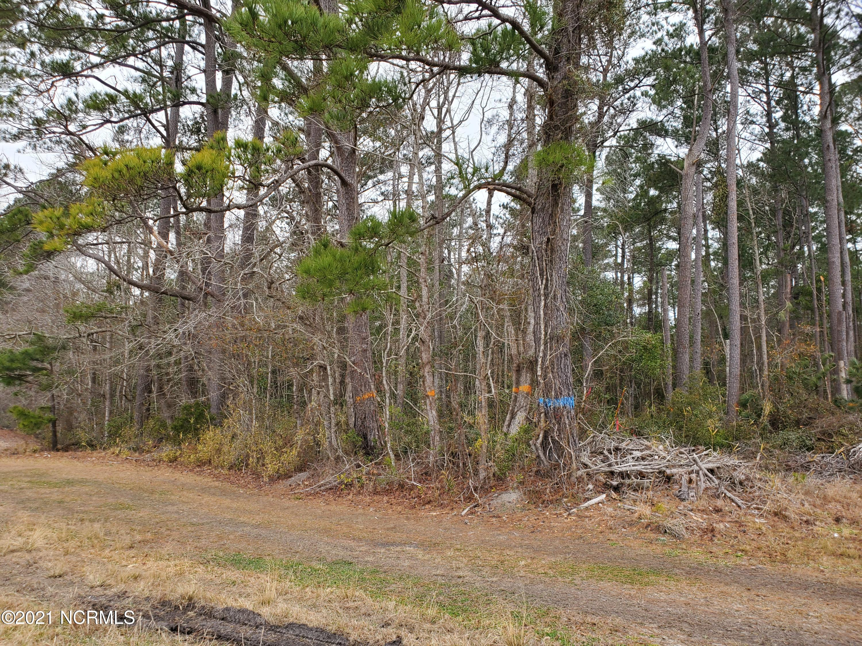000 101 Highway, Harlowe, North Carolina 28570, ,Wooded,For sale,101,100256375