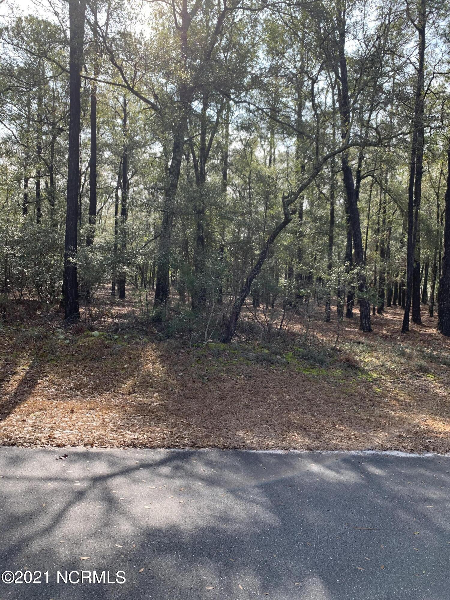 1820 Harbour Edge Lane, Supply, North Carolina 28462, ,Residential land,For sale,Harbour Edge,100257150