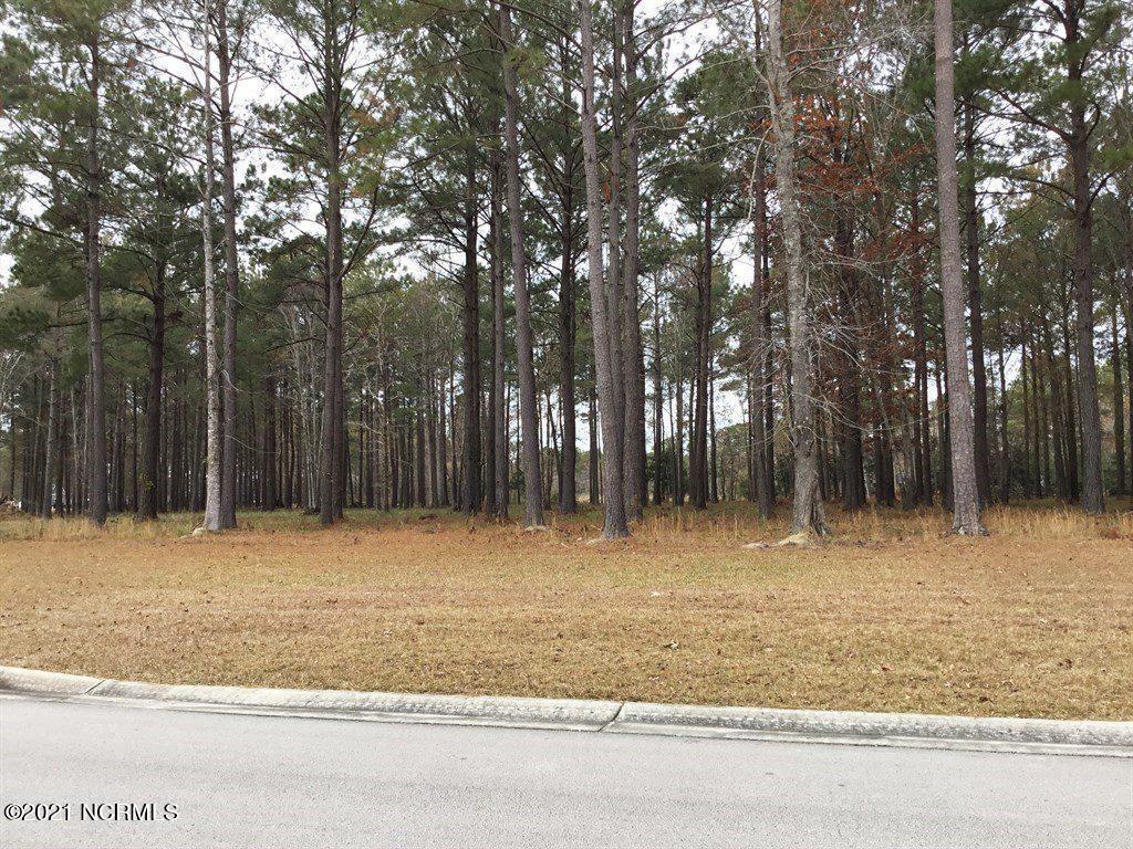 132 Southern Plantation Drive, Oriental, North Carolina 28571, ,Residential land,For sale,Southern Plantation,100258017