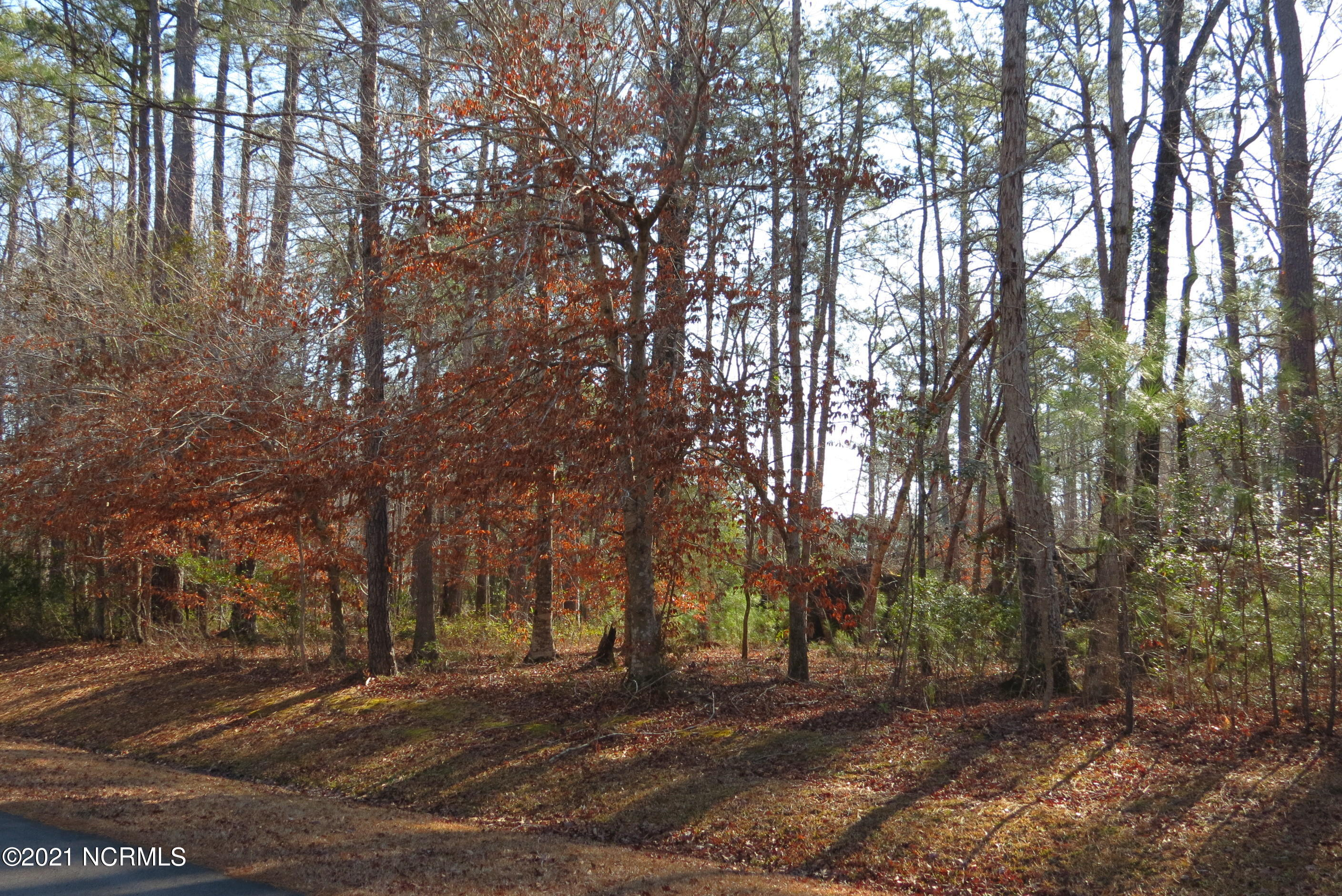 42 Winding Creek Drive, Oriental, North Carolina 28571, ,Residential land,For sale,Winding Creek,100258816
