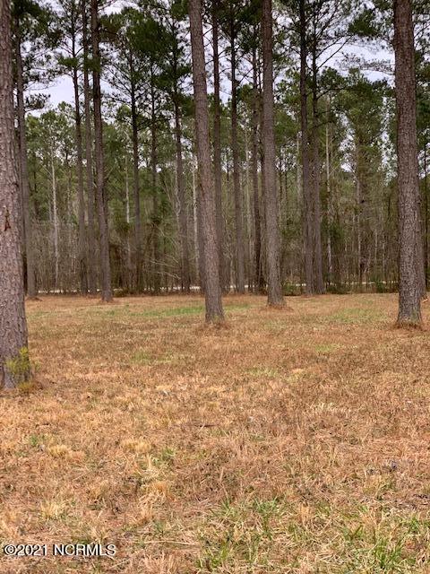 2 Baldhead Island Court, Arapahoe, North Carolina 28510, ,Residential land,For sale,Baldhead Island,100259846