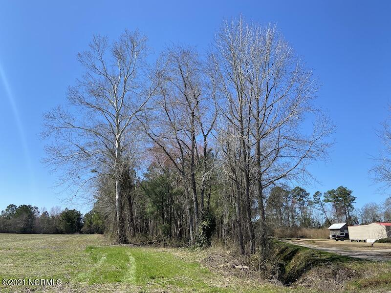 Near 96 A. L. Coleman Drive, Nakina, North Carolina 28455, ,Residential land,For sale,A. L. Coleman,100259864