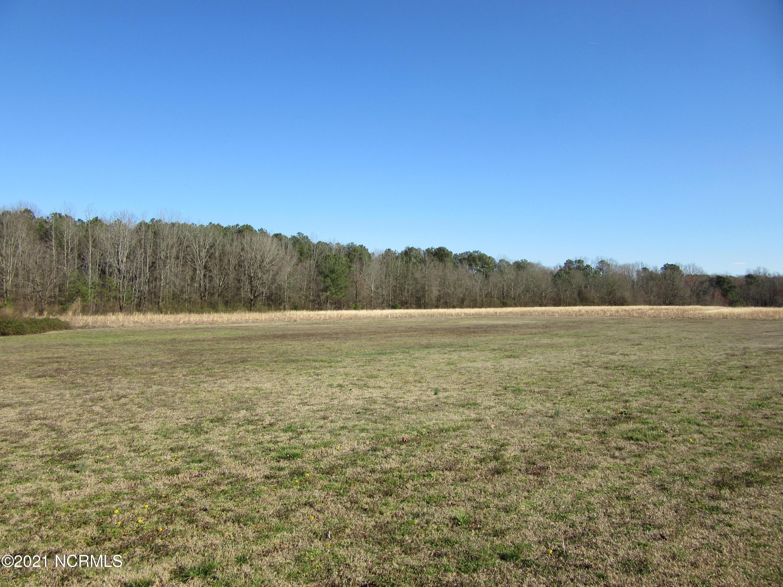 15.96 Ac Momeyer Way, Nashville, North Carolina 27856, ,Residential land,For sale,Momeyer,100259928
