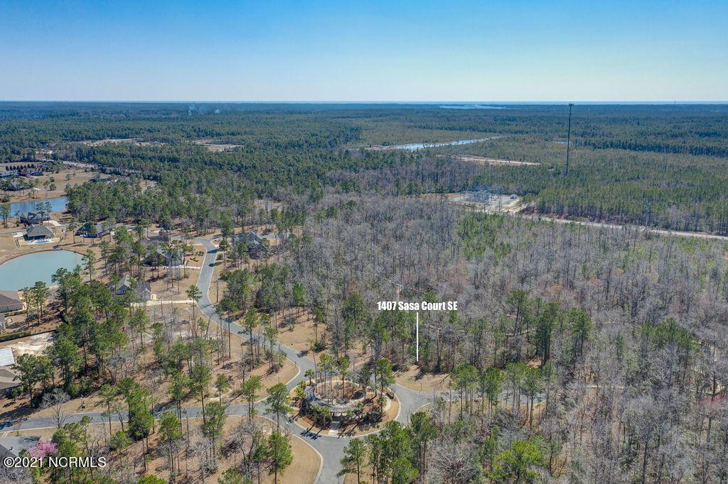 1407 Sasa Court, Bolivia, North Carolina 28422, ,Residential land,For sale,Sasa,100261584