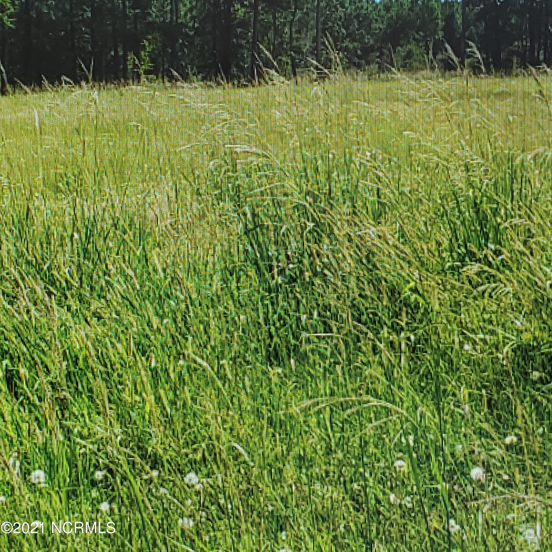 0 Pungo Creek Road, Pinetown, North Carolina 27865, ,Residential land,For sale,Pungo Creek,100260103