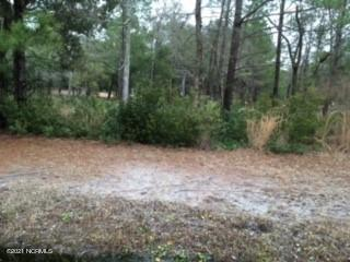 2110 Oyster Harbour Parkway, Supply, North Carolina 28462, ,Residential land,For sale,Oyster Harbour,100260811
