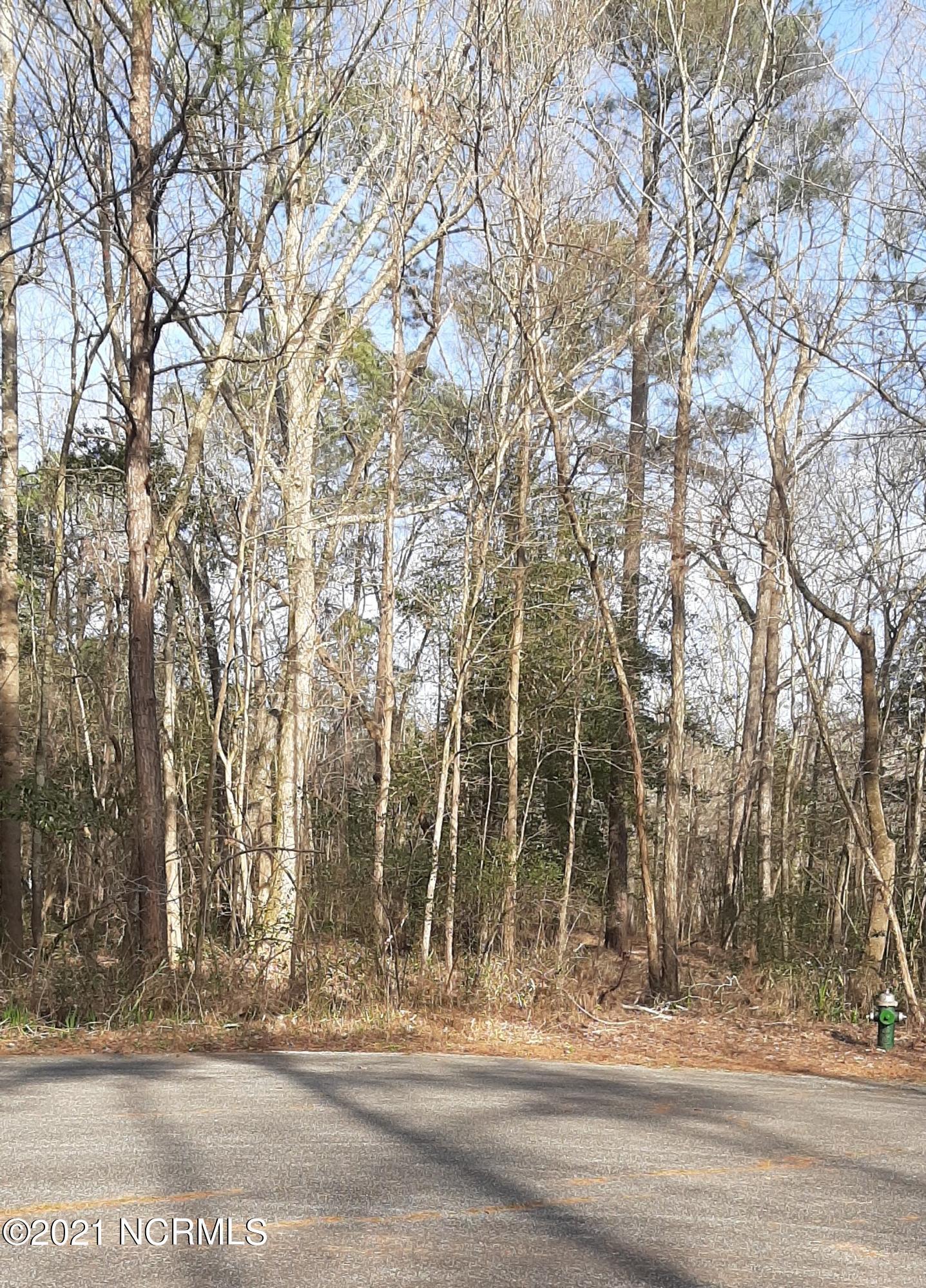 Lot 10 Old Plantation Drive, Kinston, North Carolina 28504, ,Residential land,For sale,Old Plantation,100260618