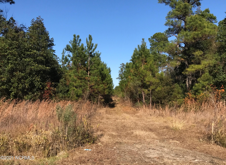 Tbd SR 1150 & Hwy 258, Trenton, North Carolina 28585, ,Recreation,For sale,SR 1150 & Hwy 258,100260835