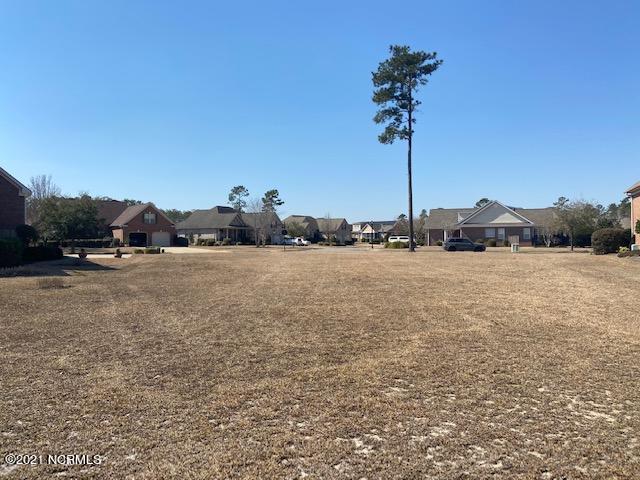 2214 Talmage Drive, Leland, North Carolina 28451, ,Residential land,For sale,Talmage,100260934