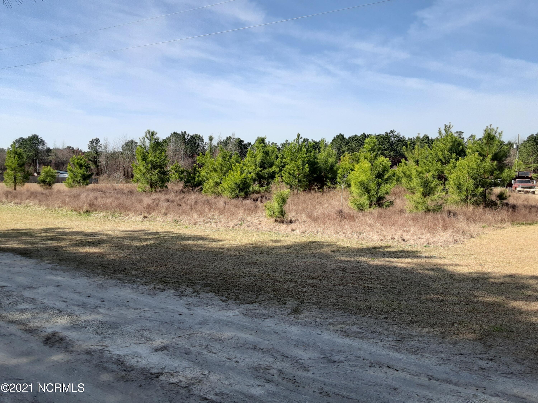 217 Oakhurst Drive, Lumberton, North Carolina 28358, ,Residential land,For sale,Oakhurst,100261001